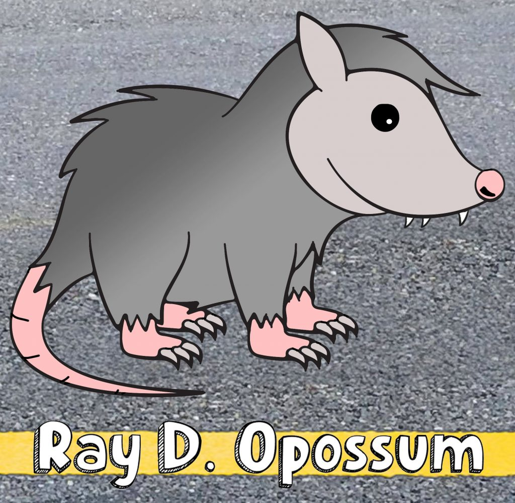 Ray D. Opossum EP